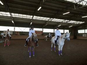Pferdeweihnacht 2017 – Bunter Nachmittag für Groß und Klein